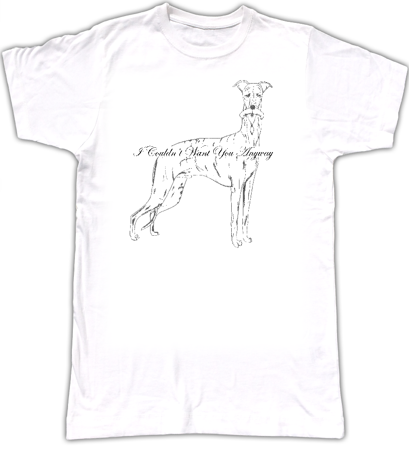 'I Couldn't Want You Anyway' T Shirt